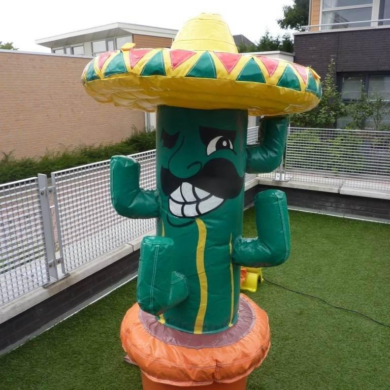 Kaktus Spiel